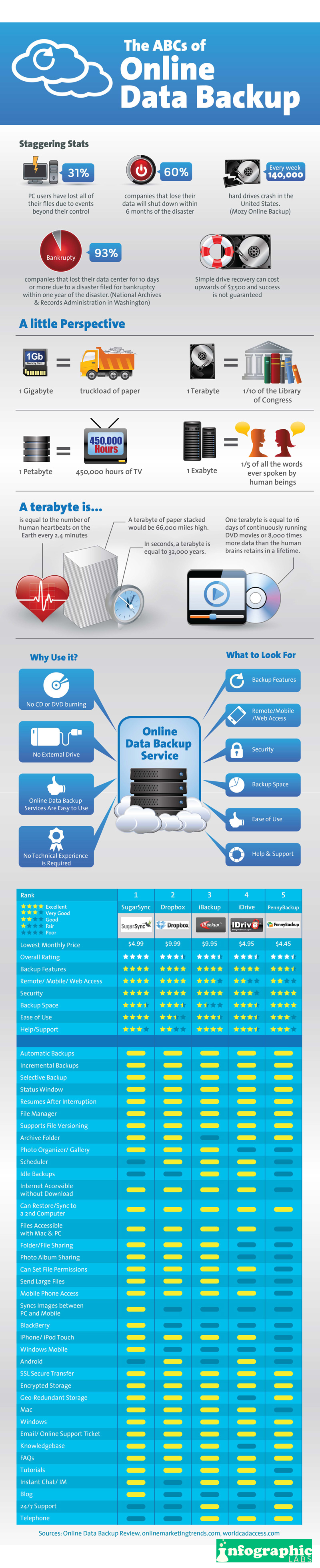 Online Data Backup: Why your Business needs it